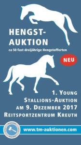 Hengstauktion TM-Auktionen @ Festhalle Rieden